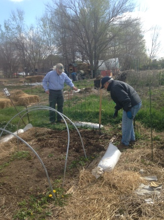 John and Pat relocating our plots' compost pile