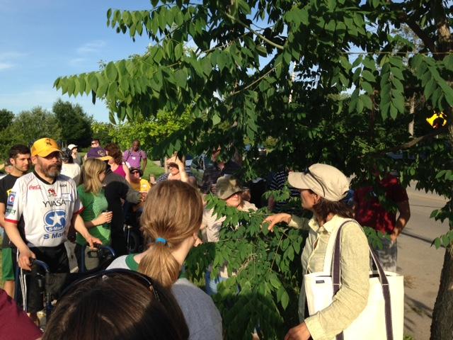 Amy Jo leading us on a tree walk!
